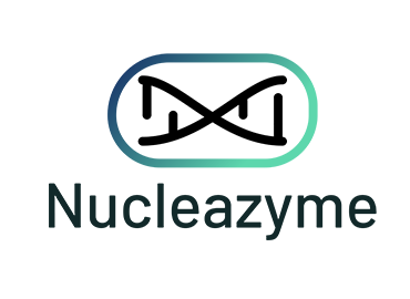 Nucleazyme